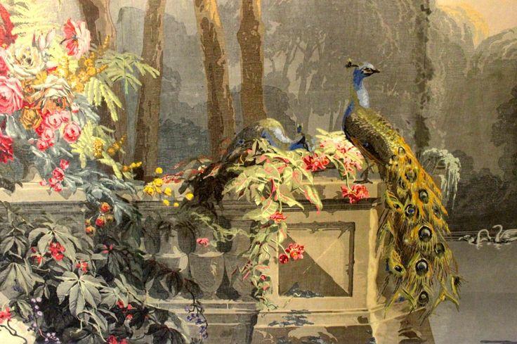 Closeup of peacocks on Zuber's El Dorado wallpaper via The Gracious Posse