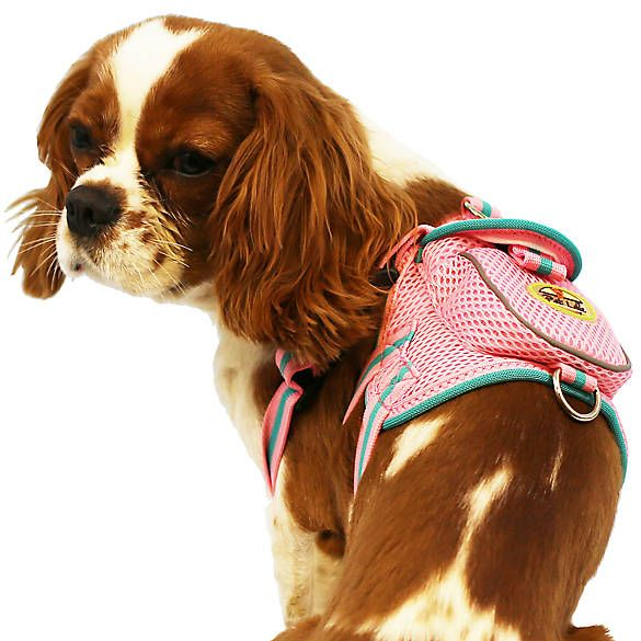Pet Life Pet Harness With Pouch Pet Life Dog Harness Pets
