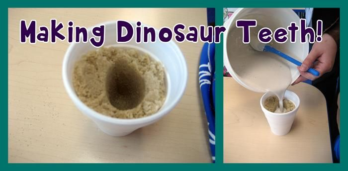 Make your own dinosaur teeth! Fun activity to do at home with your kids or in the classroom with your students. http://www.mpmschoolsupplies.com/ideas/4835/making-a-dinosaur-tooth/