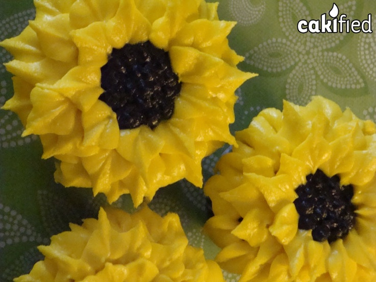 Sunflower Cupcakes, My Birthday, Birthday Parties, Birthday Ideas, Cake Baby,  Cupcake Ideas, Sunflowers, Sweet Treats, Cake Decorating