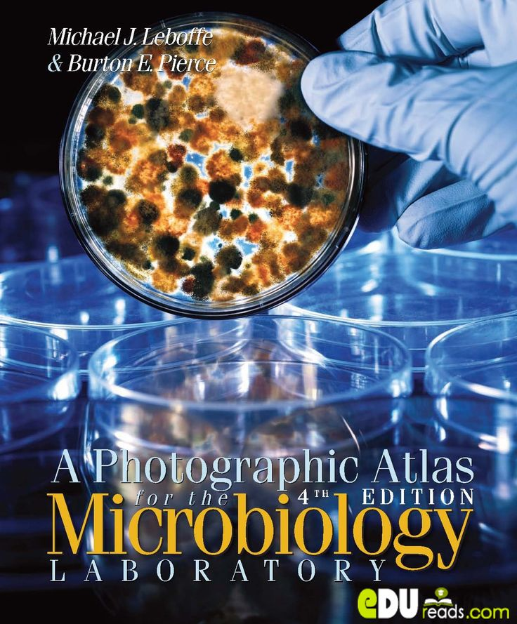 A PHOTOGRAPHIC ATLAS FOR THE MICROBIOLOGY LABORATORY 4TH EDITION - Coverage of this book has expanded from being primarily a book with a medical microbiology emphasis to one with a more balanced emphasis of microbiology in general. It presents an excellent resource for the microbiology student, and is actually as much of a chemistry refresher as it is a microbiology textbook and lab book all in one. **  #microbiology #biology #science #microbiologylaboratory