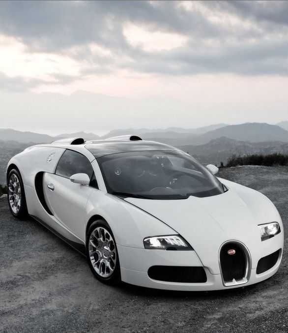It's #WildWednesday and we are tipping our hats to the beauty that is the Bugatti. Check it out at eBay...