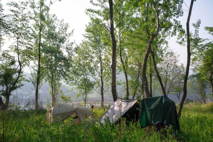 Wild Camping Along the Han River Forest was great!  Here's the blog post of our 3-day bike-camping trip from Chuncheon to Seoul : http://koreanrooftop.com/chuncheon-han-river-bike-camping/