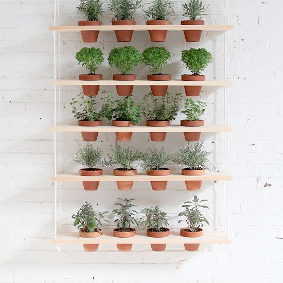 DIY Vertical Garden Great for herbs!