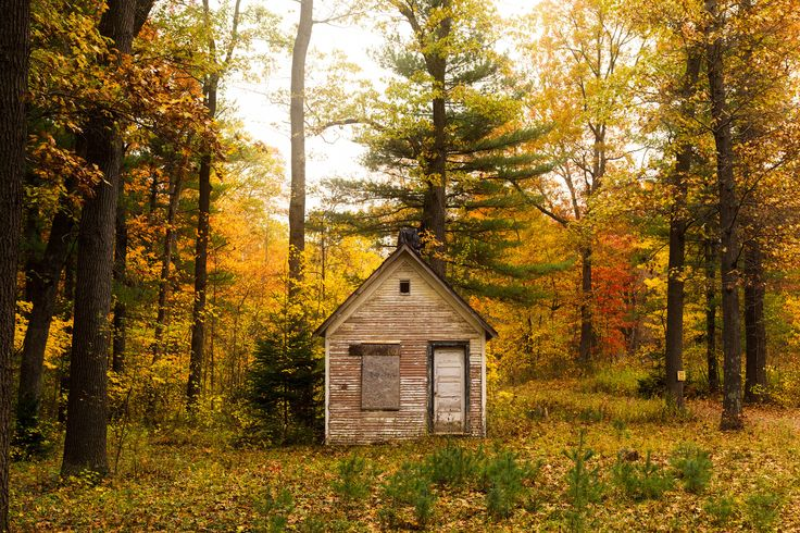 https://flic.kr/p/P4wmYV | Fall surrounds an old shack deep in the woods of Southwest Michigan | Allegan State Game Area, Allegan County, Michigan.