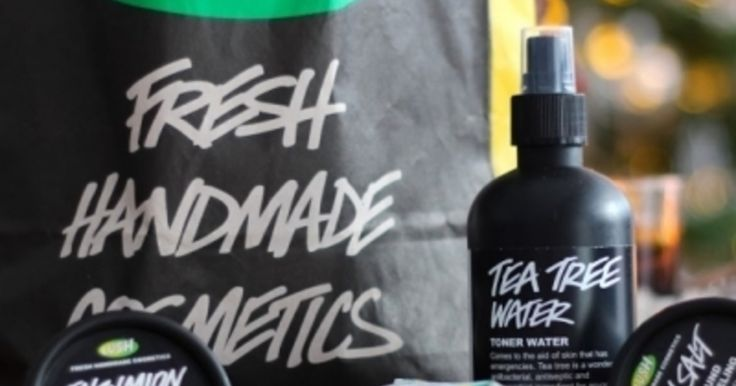 13 of the Best LUSH Products to Use for Acne-prone Skin ...