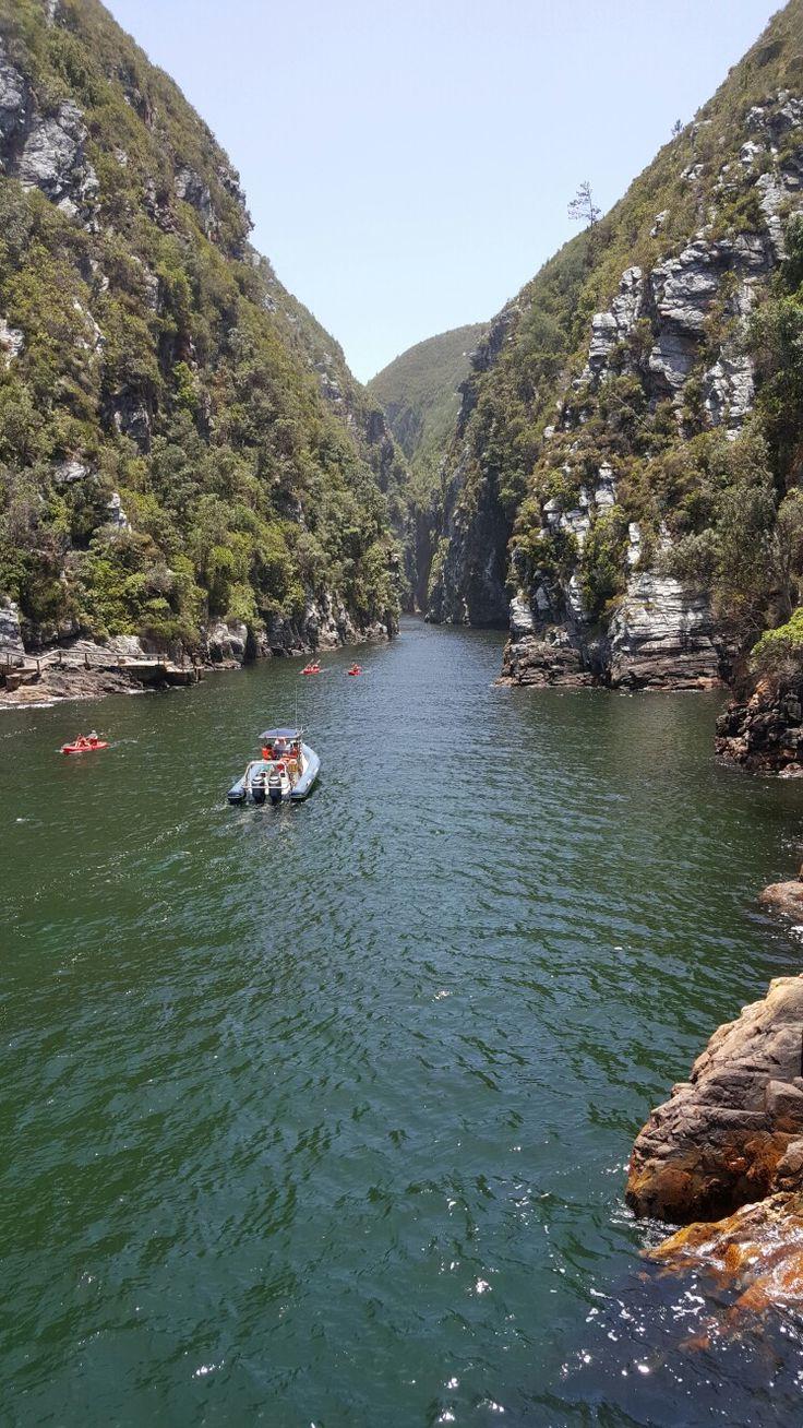 Tsitsikamma River gorge Garden Route, South Africa