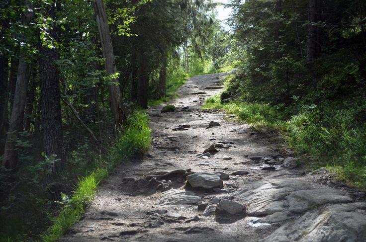 Molde by http://tonnyfroyen.com/  #landscape #sky #nature #naturephotography #naturelovers  #instapic #travel #Scenery #trees #natureaddict #naturegram  #amazing #art #bestoftheday #gorgeous #beauty #pretty  #wanderlust #outdoor #beautiful #life #adventure #view #wilderness #wild #smpno #nrkmogr #molde #rbnett  #vghelg #morenytt #tkvær #YRno #norway #norge  #mobiltoner #tonnyfroyen