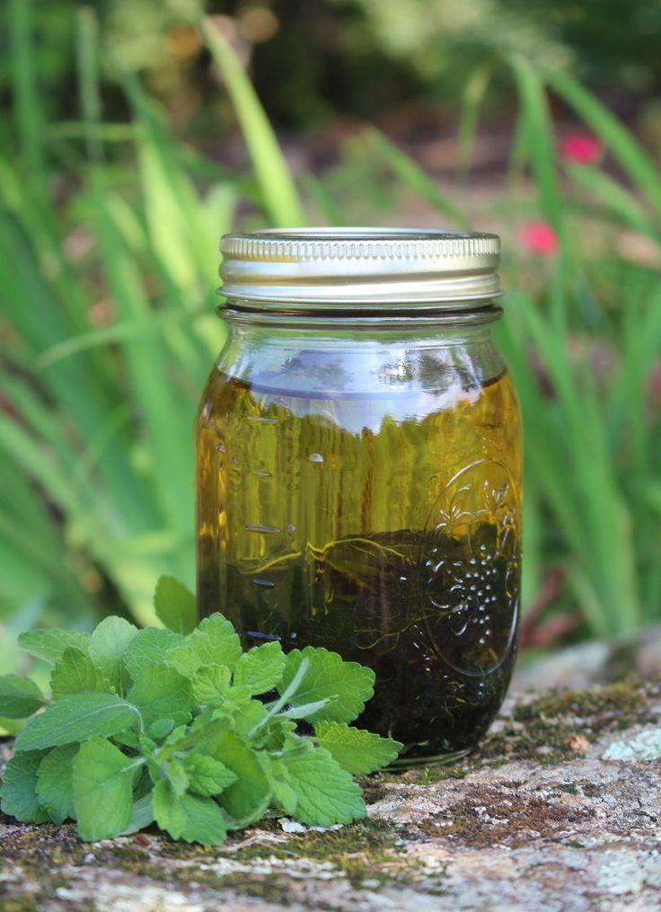 lemon balm infused oil