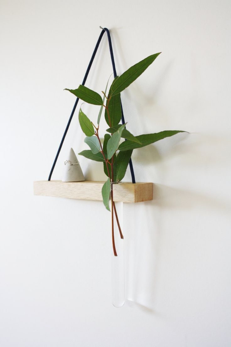 Test Tube Planters by kirraleeandco on Etsy      More like this