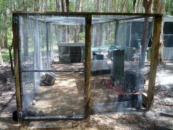 17 best images about backyard farming on pinterest hoop for Enclosed chicken run plans