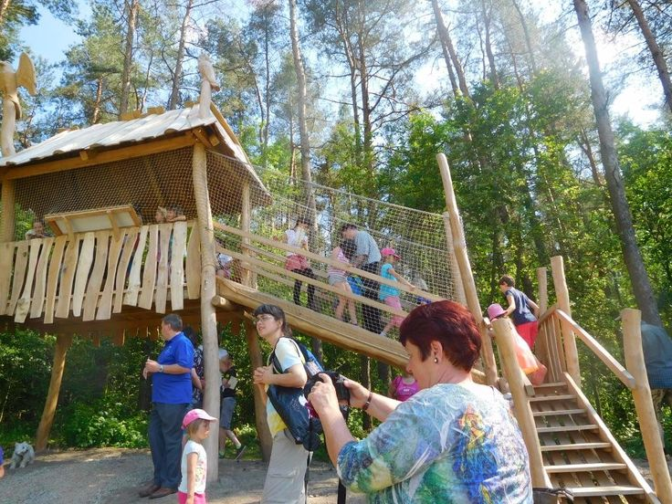 PETROVICE - Jen pár kilometrů za milevskými humny v Petrovicích dnes odpoledne otevřeli lesní stezku a ta rodinám s dětmi úplně zadarmo…