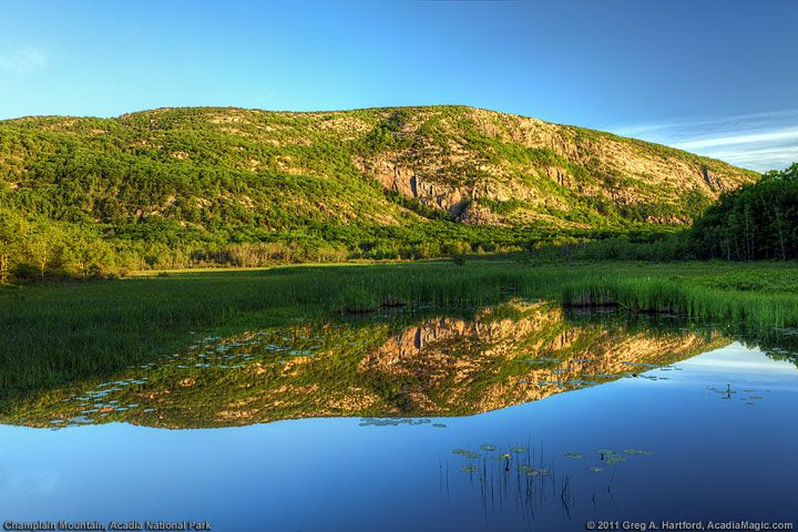 Quotes About Acadia Maine: 78 Best WACKY, WILD, AND WONDERFUL: 50 STATE POEMS Images