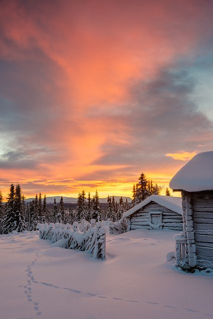 Beautiful sunset over the snow covered lanscape at Staffsvallen, Härjedalen, Sweden.