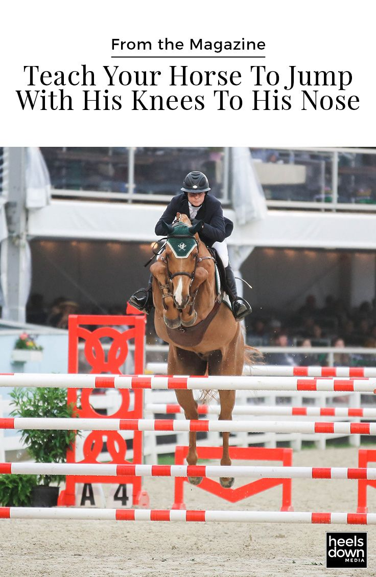 Some horses naturally have good jumping form. Some learn it over time. [Read more...]