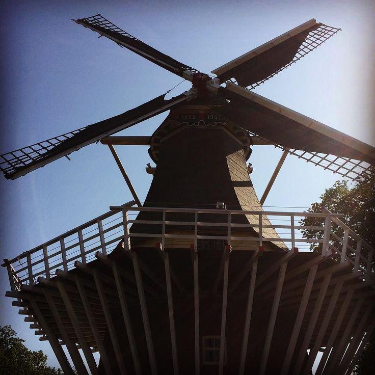 #keukenhof #holland #netherlands #windmill by ortis293