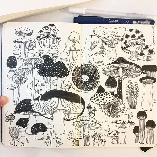 hee_cookingdiary instagram - Day 10, Mushroom I love mushrooms!