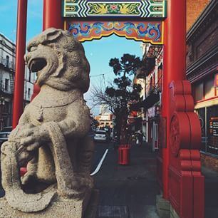 Canada's oldest Chinatown located in Victoria, BC. Stroll down Fisgard St, view the historic buildings and try some delicious food at numerous restaurants in the neighbourhood. (photo: @stevenamo via Instagram) #exploreBC #exploreCanada