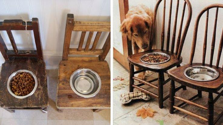 les 25 meilleures id es de la cat gorie gamelle chien sur pinterest gamelle chat gamelle pour. Black Bedroom Furniture Sets. Home Design Ideas