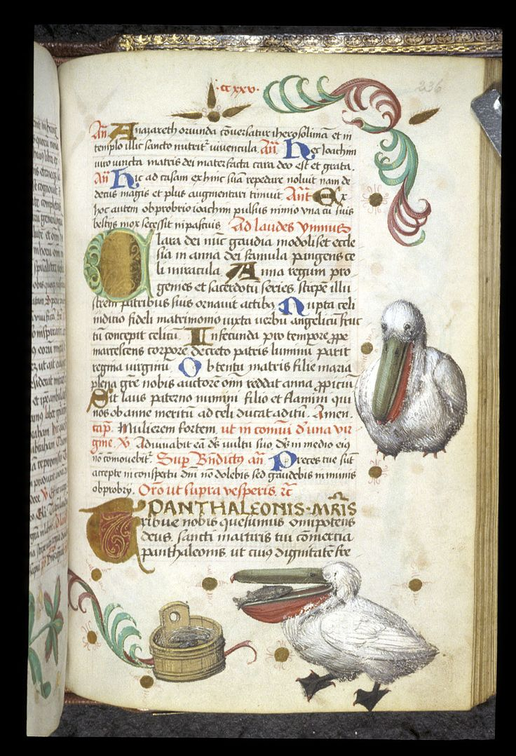 Pelican. Book of Hours, Use of Worms (Germany), with elements of a Breviary, c. 1475 - c. 1485, Latin