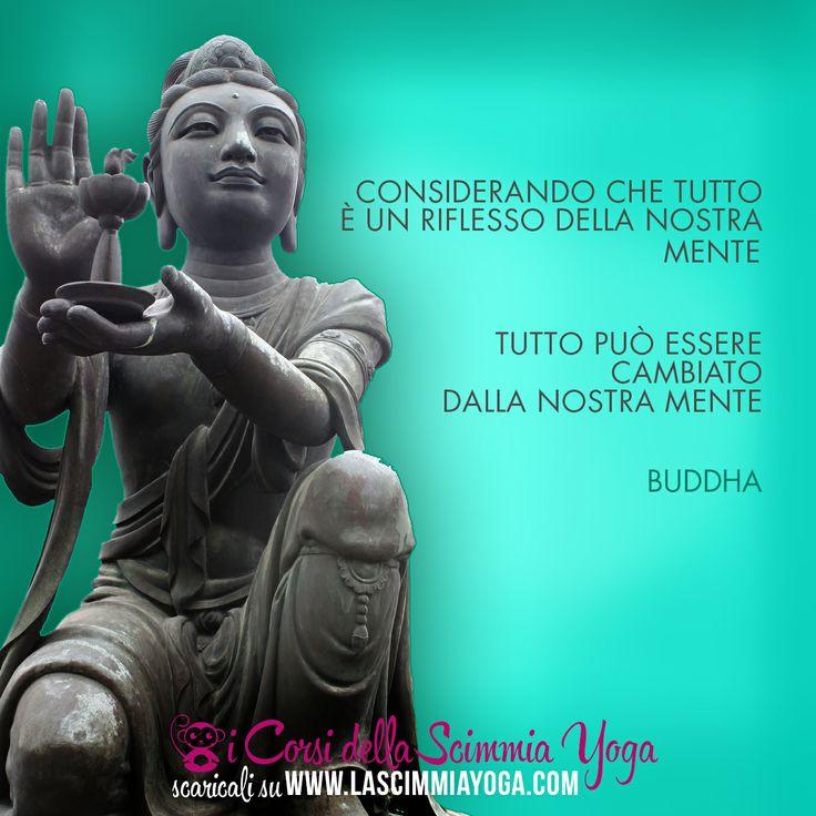 #FaiYoga http://www.lascimmiayoga.com