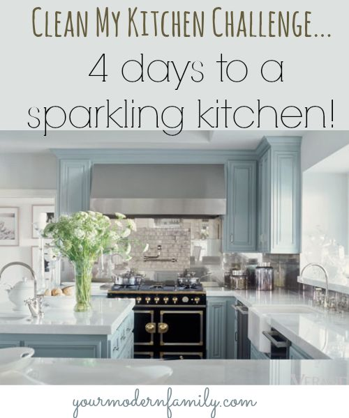Clean My Kitchen - the 4 Day Series to a Cleaner Kitchen!