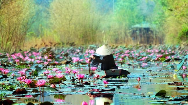 Great #holiday deals to Vietnam, Indonesia and Thailand #travel #Asia