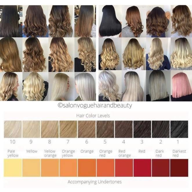 The Best Hair Color Chart With All Shades Of Blonde Brown Red Black Hair Color Chart Hair Dye Color Chart Hair Color Swatches