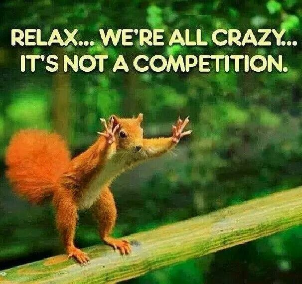 Squirrels (and people)...relax...we're all crazy...it's not a competition.