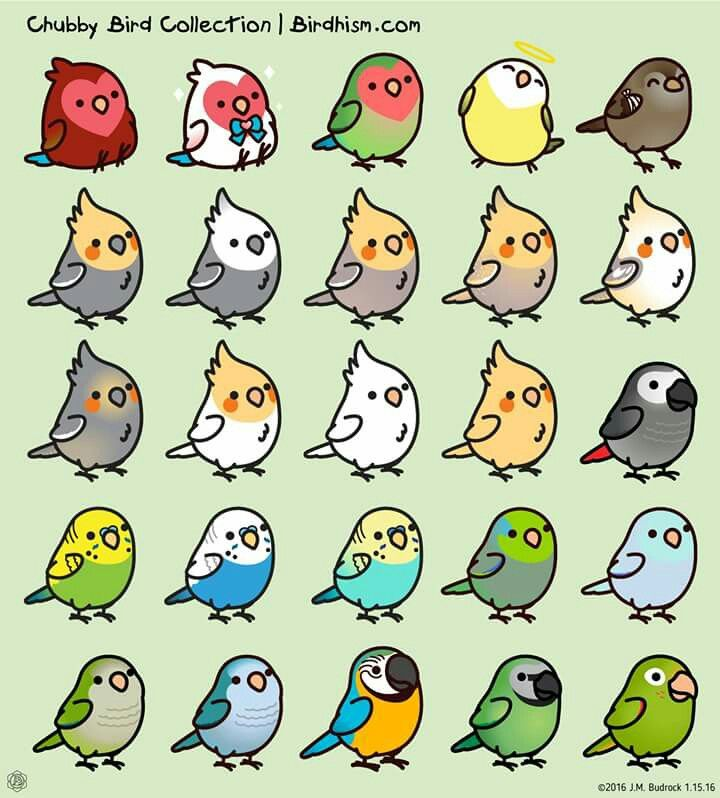 kawaii mini birds!  oiseaux kawaii