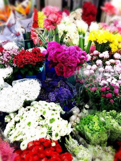 #flowers  #양재동 꽃시장