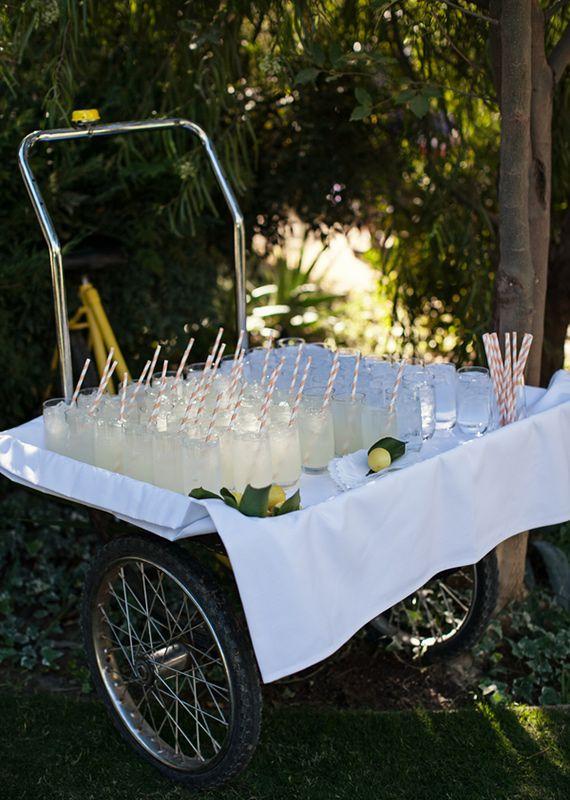Lemonade cocktail cart   photos by Frenzel Studios   100 Layer Cake