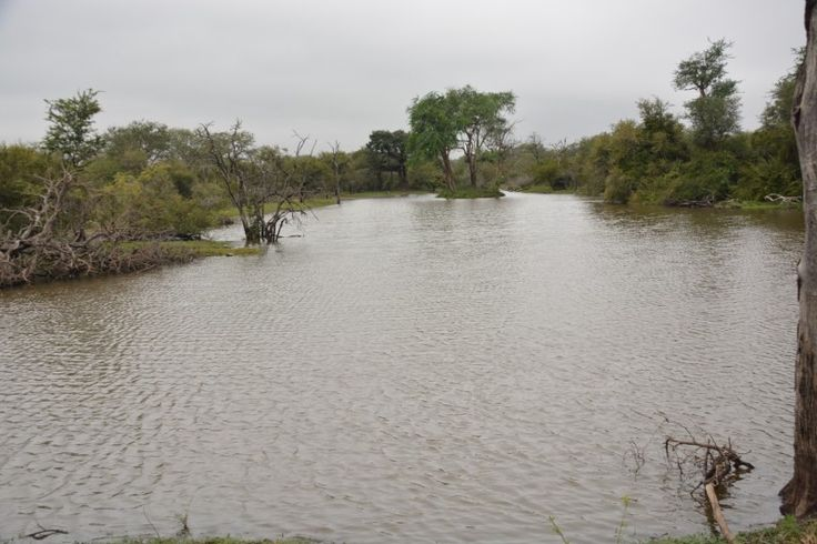 View from farm in Klaserie.
