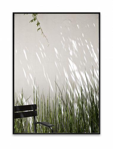 Motiv fra en av de skjulte, private bakgårdene i Barcelona der en frodig klatreplante kaster skygger på den gamle stallveggen. 50 x 70 cm. Begrenset antall på 100 stk, av Linda Elmin