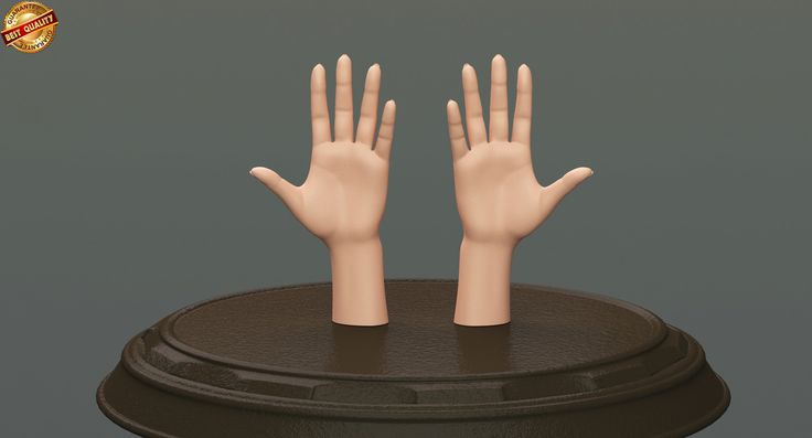 3d obj body female anatomy human
