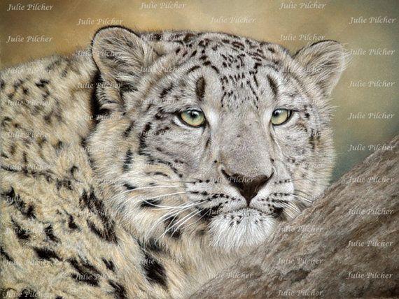 Instant Digital Download  8 x 6 Snow Leopard