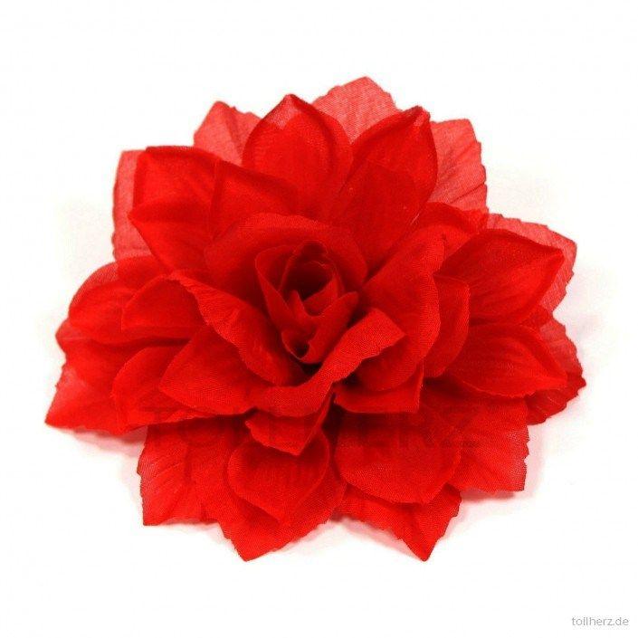 Ansteckblume, Haarblume Dahlie in rot