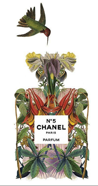 Chanel Nº 5 perfume illustration by Sixto-Juan Zavala for Highlife Magazine   Cynthia Reccord