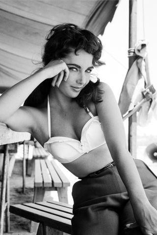 19 incredibly glamorous photos of Elizabeth Taylor, in honor of the late actress's birthday: