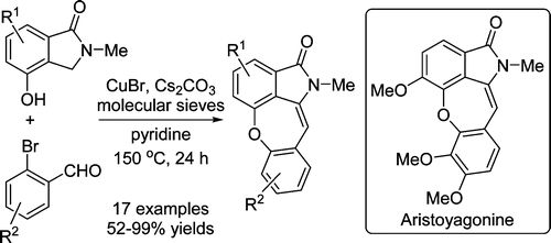 Synthesis of Dibenzoxepine Lactams via a Cu-Catalyzed One-Pot Etherification/Aldol Condensation Cascade Reaction: Application toward the Total Synthesis of Aristoyagonine