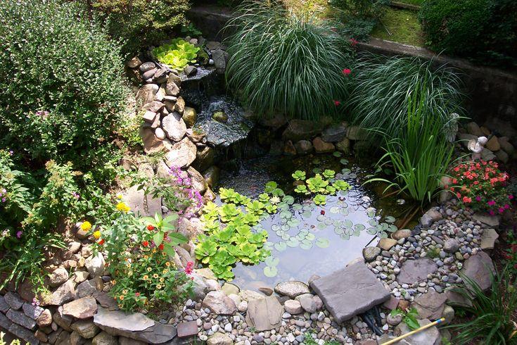 garden ponds and waterfalls | Backyard Pond Home Garden Design Ideas | Home Design Gallery