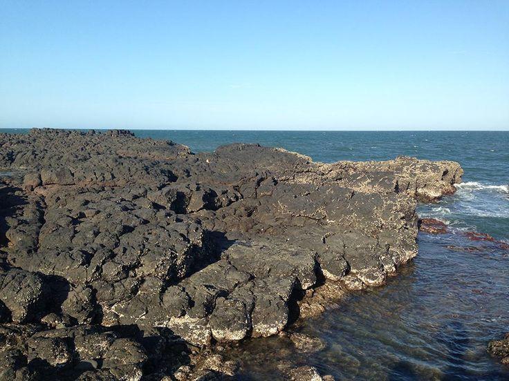 Snorkelling Barolin Rocks at Coral Cove | Make the Day