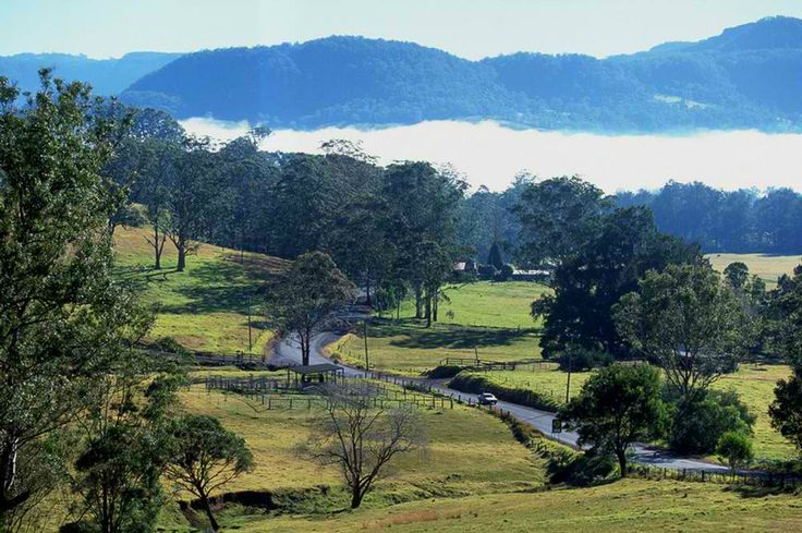 Road in Kangaroo Valley #kangaroo #valley #australia #drive #travel #infrastructure