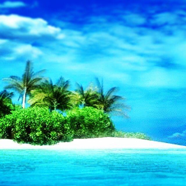 Vanaf je paradijselijke strand bestel je heel makkelijk bloemen voor de bv Nederlandse jarige via WhatsApp op 06-29082882 #bezorgen #bijzonder #happy en krijg altijd een foto toegezonden van het eindresultaat .....fijne vakantie