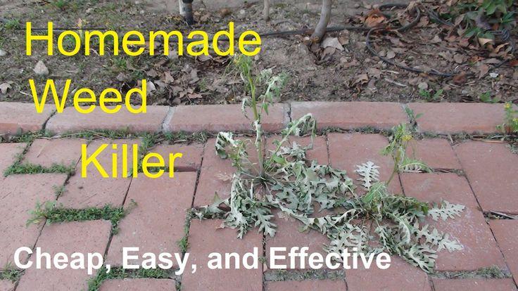 Homemade Weed Killer (Natural Weed Killer - Alternative to Roundup)