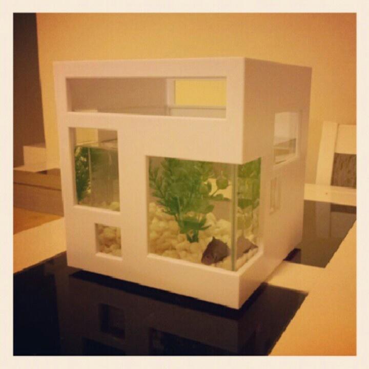 fish modern house