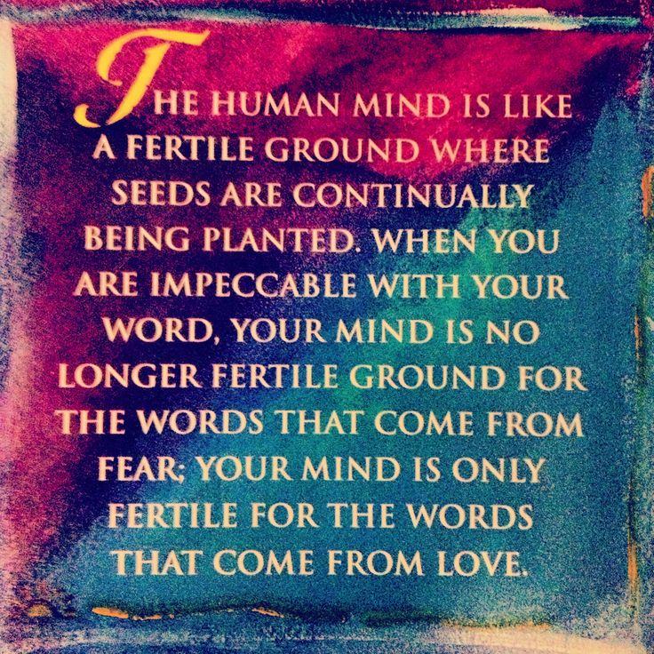 Best  Agreements Related Images On   Don Miguel Ruiz