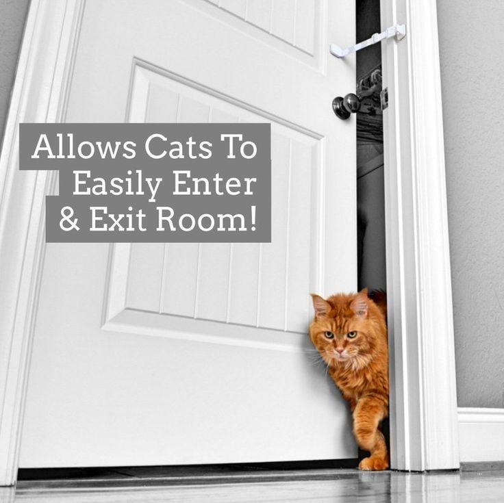 Door buddy door strap latch lets cats in keeps dogs