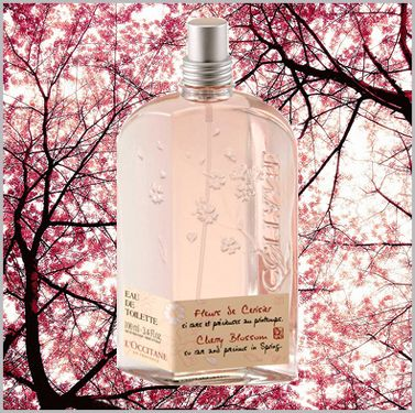 Inspired by the splendour of a French cherry tree, L'Occitane's Cherry Blossom EDT is a soft, summery scent reminiscent of warm days outdoors.