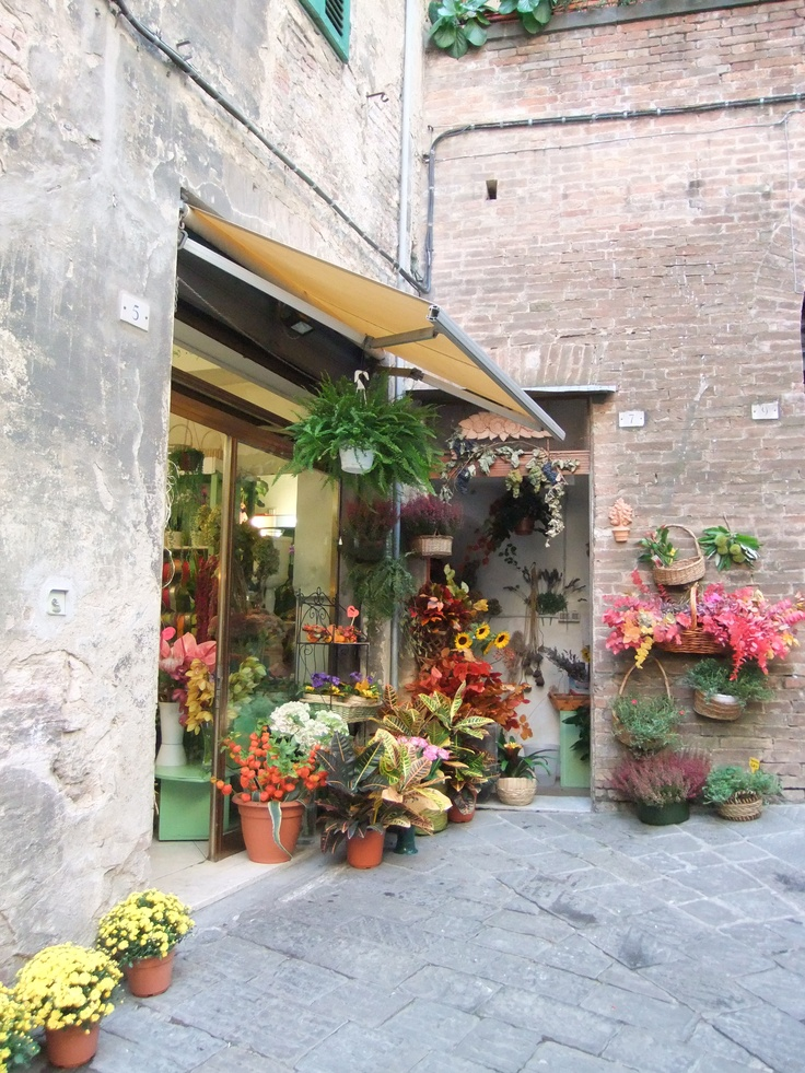 I loved this floral shop in Sienna, Italy